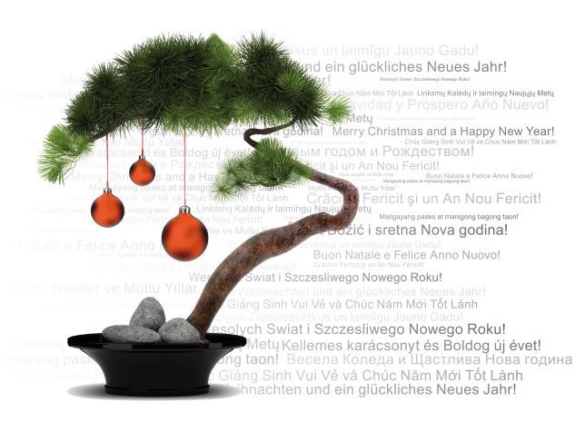 Diên Hồng — Gemeinsam unter einem Dach e.V. wünscht ein Frohes Weihnachtsfest und ein gutes Neues Jahr!