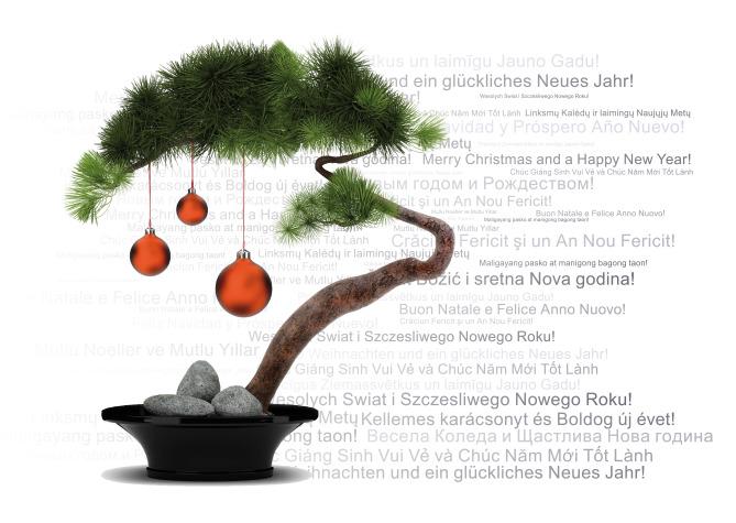 Diên Hồng — Gemeinsam unter einem Dach e.V. wünscht ein Frohes ...